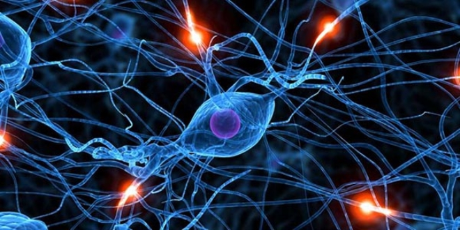 hypnosis developments in neuroscience and use Daniel david, phd, is director the theory and practice of cognitive hypnosis/hypnotherapy as part of the cognitive neuroscience paradigm and the use.