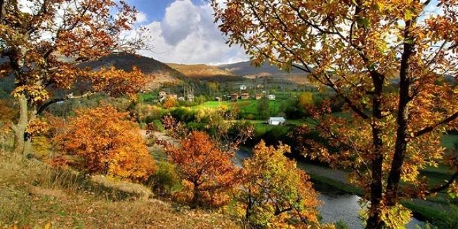 Ordu'daki Argan Yaylası turizme kazandırılıyor