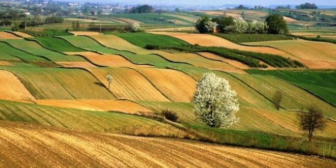 Türkiye tarım alanlarının yüzde 8,3'ünü kaybetti - Memurlar.Net