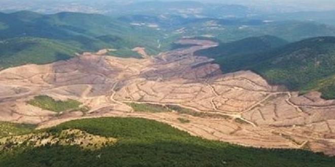 Tarım ve Orman Bakanlığından Kazdağları açıklaması